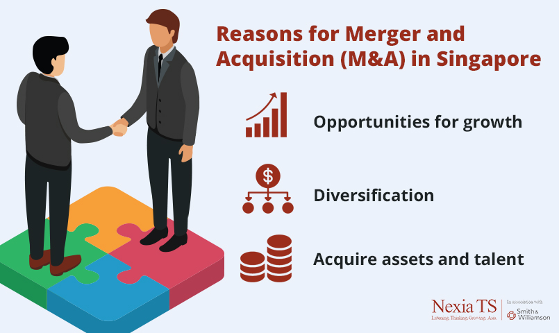 Reasons for M&A in Singapore